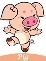 peruntungan Anda di tahun 2017 shio babi