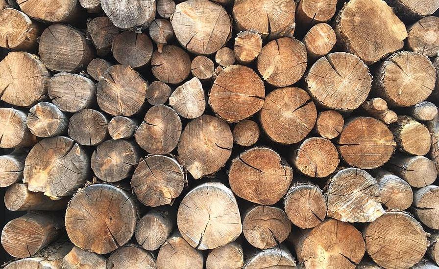 kayu bahan bangunan