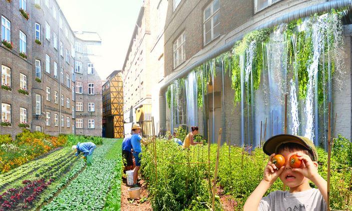 gambar urban farming