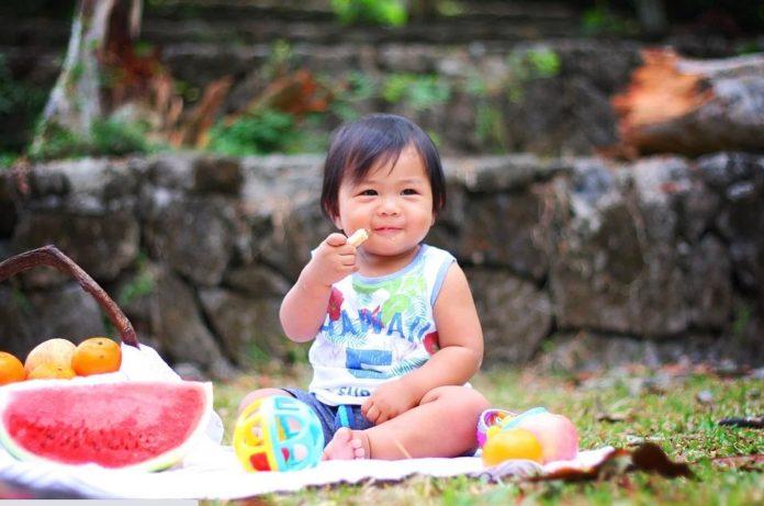 makanan dan minuman bayi