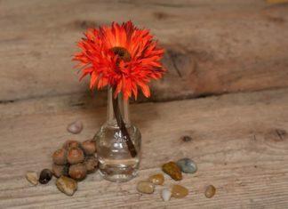 bunga plastik hiasan sudut ruang tamu