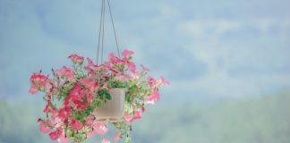 rak bunga besi tempel dinding