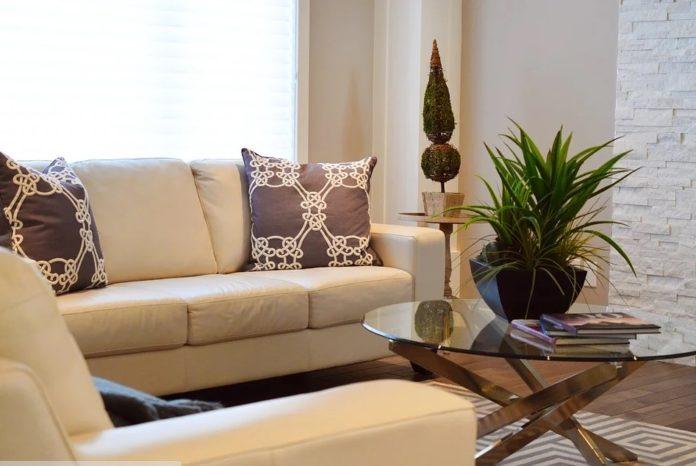 rekomendasi sofa