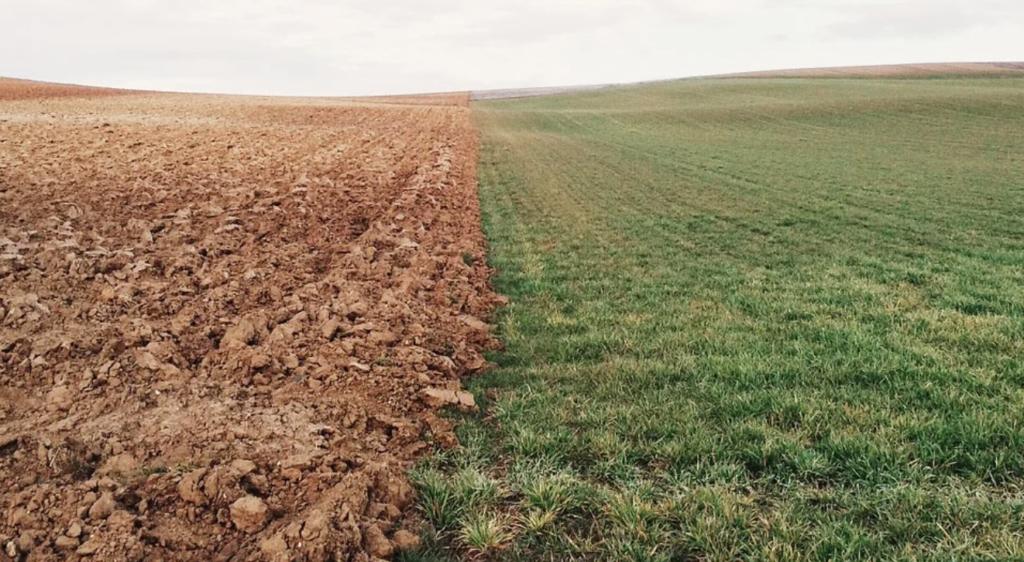 Tanah Tidak Mampu Menyerap Air