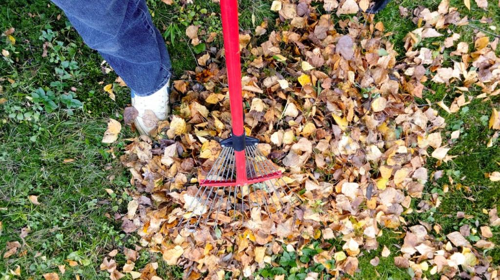 membersihkan halaman rumah dapat mencegah banjir