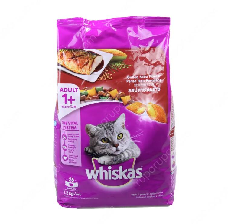 makanan kering kucing kampung