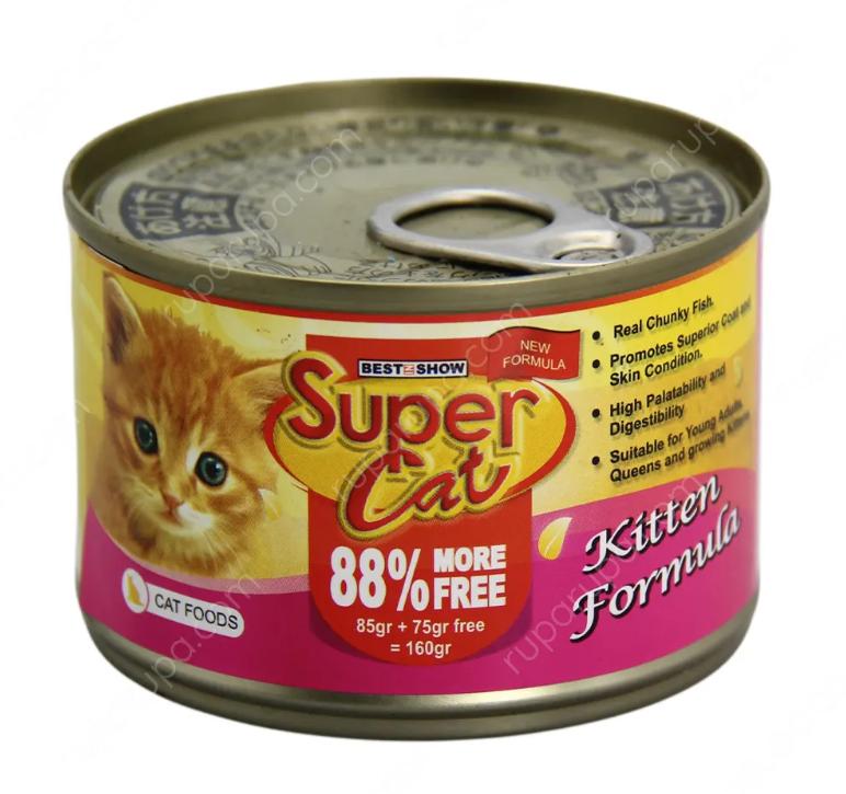 makanan kaleng kucing kampung