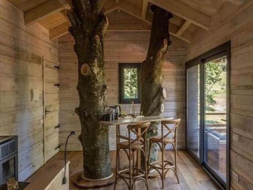 pohon di tengah rumah kayu