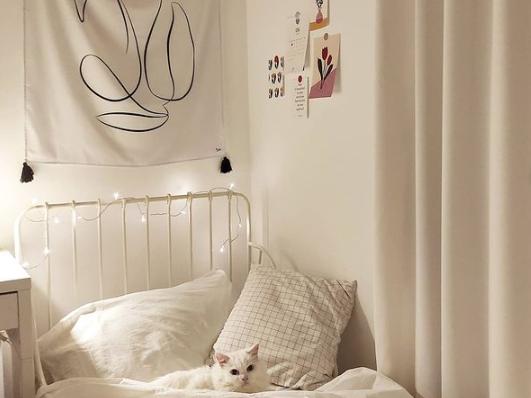 tembok warna putih untuk kamar aesthetic