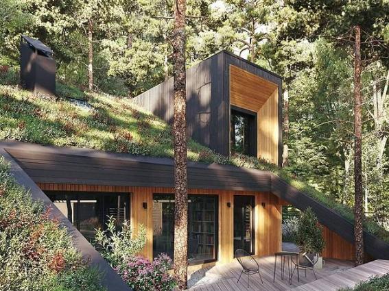 modern cabin house