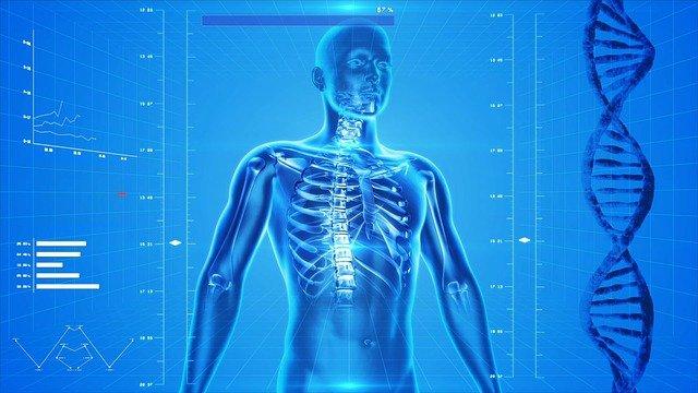 apa manfaat vitamin d bagi tulang