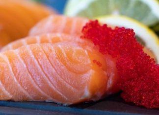 manfaat salmon