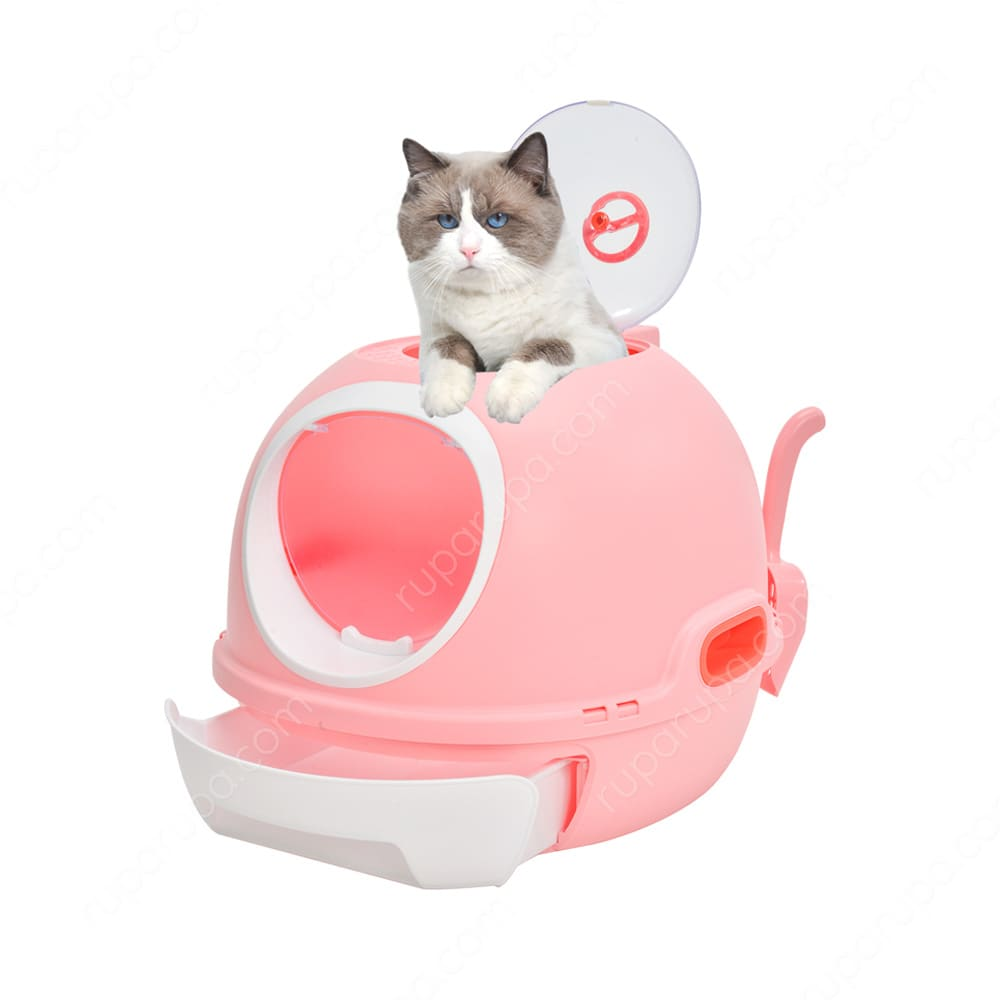 Toilet kucing