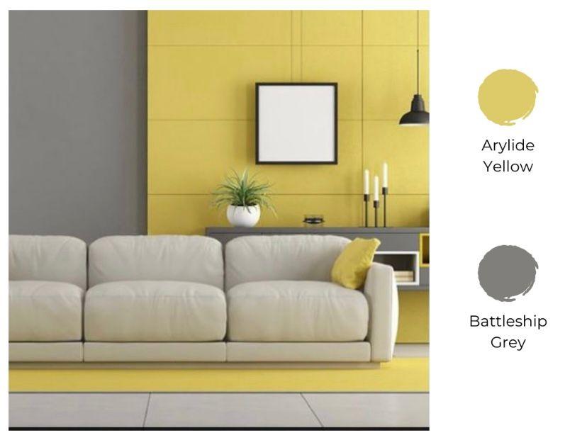 arylide yellow dan battleship grey