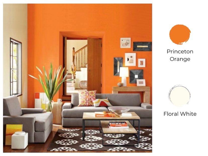cat ruang tamu 2 warna princeton orange dan floral white