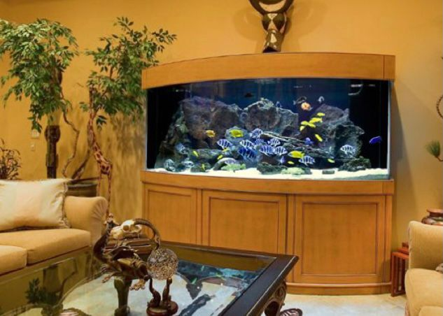 aquarium melengkung di ruang tamu klasik