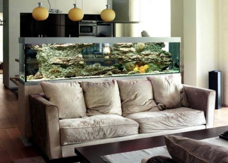 Aquarium memanjang di belakang sofa