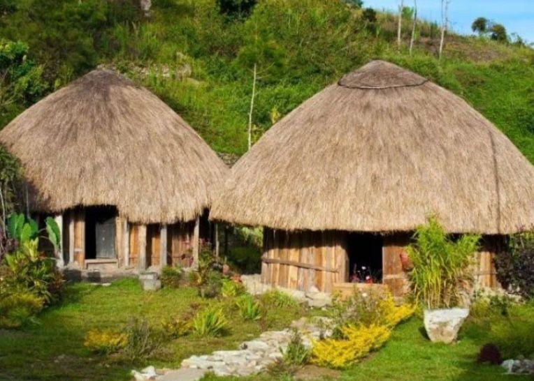 Rumah adat Provinsi Papua - Honai