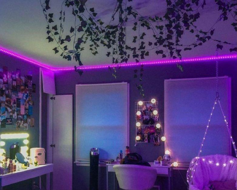 tanaman rambat pada dinding kamar