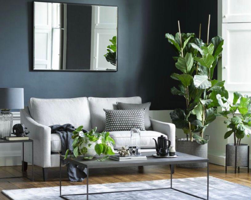 ruang tamu minimalis abu-abu dengan tanaman